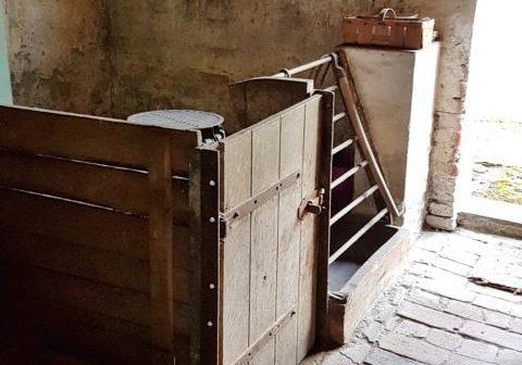 Stall
